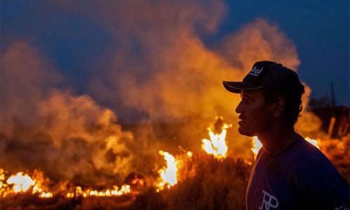 Rừng Amazon vẫn đang cháy ngày một mạnh hơn: 1.202 km2 rừng bị xóa sổ trong 4 tháng, ngang bằng diện tích một quốc gia