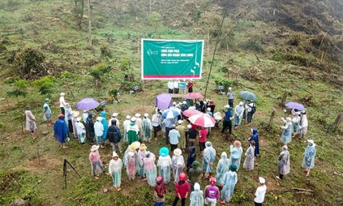 """VARS khởi động Dự án """"Cùng phục hồi rừng đầu nguồn sông Gianh"""""""