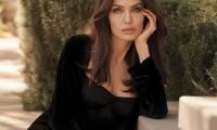 Sức hút của Angelina Jolie